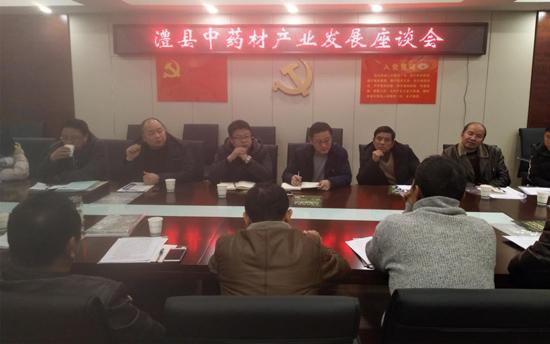 澧县召开中药材产业发展座谈会暨中药材产业协会成立筹备会议