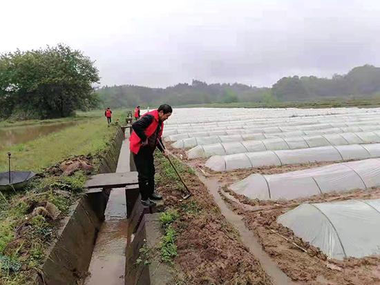"""桃源县夷望溪镇:学党史突出为群众办实事,助力粮食生产""""顺""""起来"""